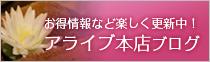 アライブ本店ブログ