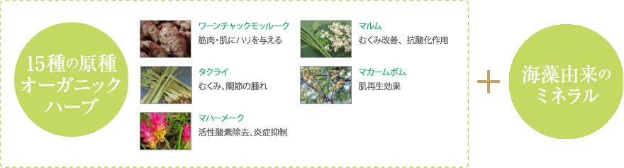 15種の原種オーガニックハーブ+海藻由来のミネラル